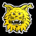 FC Ilves