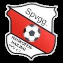 СК Ханкофен-Хайлинг