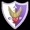 Atlético Fénix