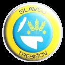 Славой Требишов