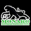 Монаро Пантерс