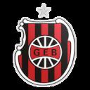 ФК Бразиль де Пелотас