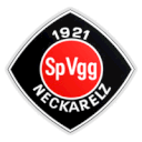 SpVgg Neckarelz