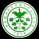 ФК Хамаркамератен