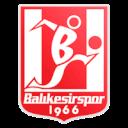 ФК Баликешиспор