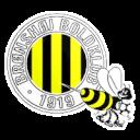 Bronshoj BK