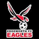 FC Edgeworth