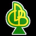 Darica G Birligi