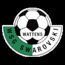 Swarovski Wattens