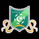 Ханчжоу Гринтаун ФК