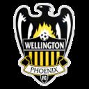 Wellington Phoenix Reserve